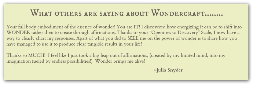 wondercraft-testimonial